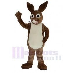 Brown Peter Rabbit Mascot Costume Cartoon