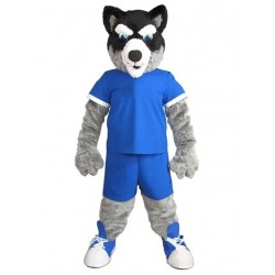 Black and Gray Husky Dog Mascot Costume in Blue Jersey Animal