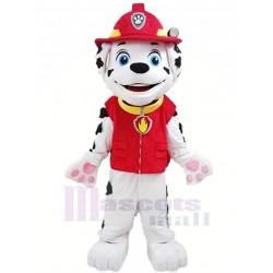 Paw Patrol Mascot Costume Cartoon
