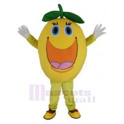 Cute Round Orange Mascot Costume