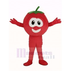 VeggieTales Character Tomato Bob Mascot Costume Cartoon Plants