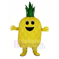 Pineapple Fruit Mascot Costume